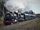 Grand New Zealand Rail & Steam Train Tour - 17 Days
